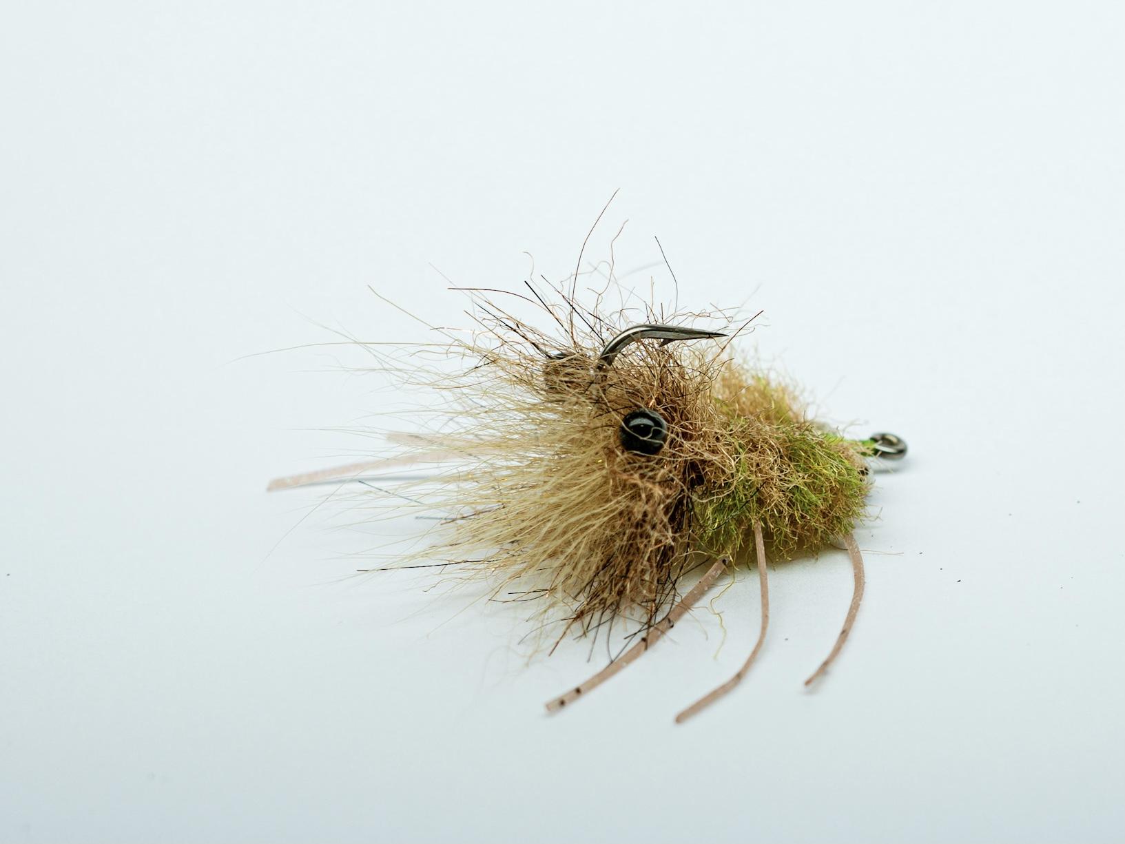 cole_fischer_crab_fly