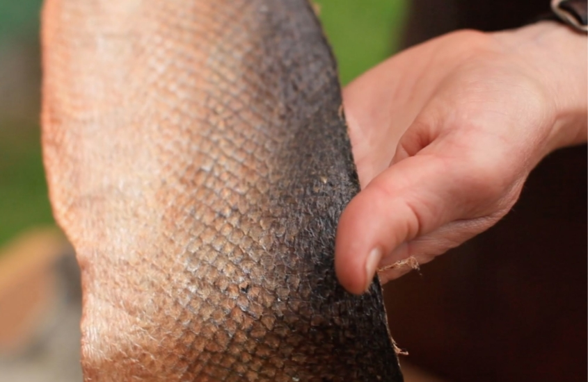 lotta_rahme_how_to_make_fish_leather