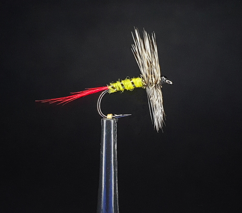 Grey Hackle Yellow