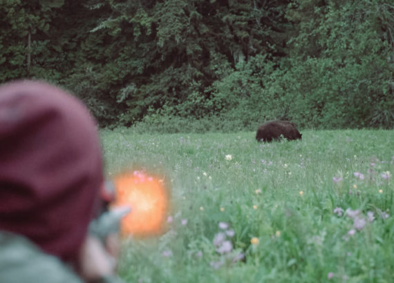spencer_greening_bear_hunting