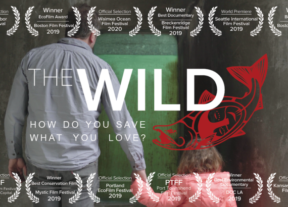 The Wild Documentary