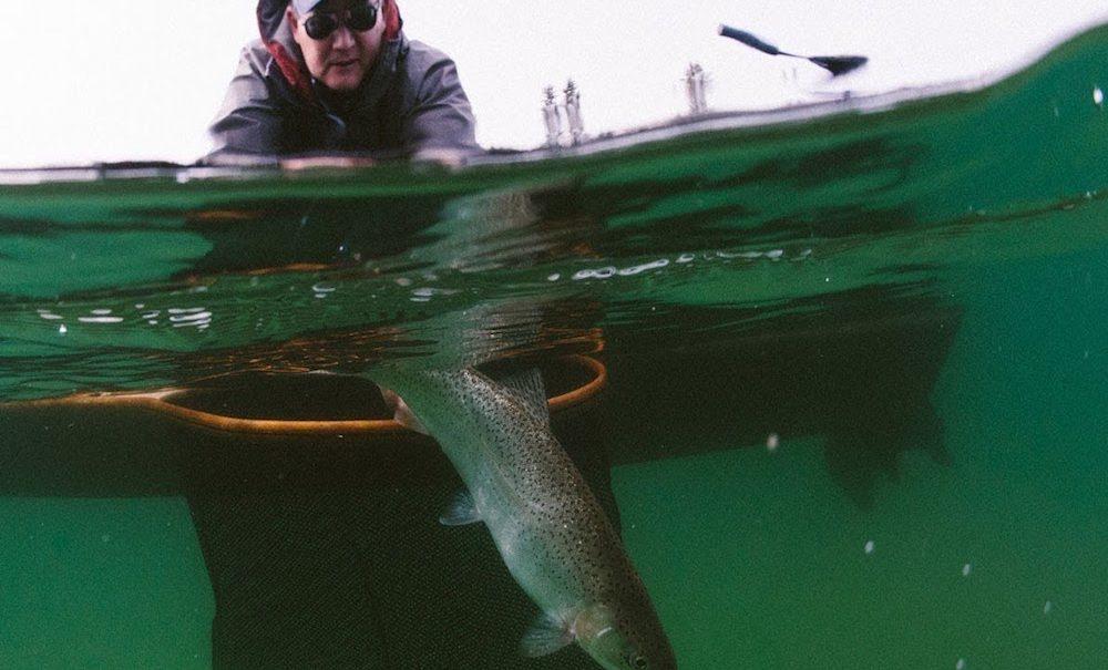 Brian Chan On Stillwater Fishing
